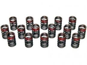 TOMEI Ventilfedern für Nissan 200SX S14/S14A